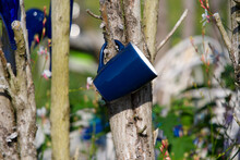 Blue Cups And Bottles Hanging On Bush Tree At Garden. Photo Taken September 25th, 2021, Neuhausen, Switzerland.