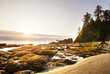 canvas print picture Olympic coast