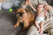 Belgian Griffon And A Human Baby