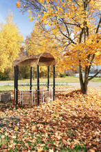 Autumn, A Gazebo And A Lot Of Maple Leaves