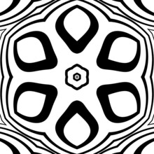Abstract Floral Pattern In Black And Whi