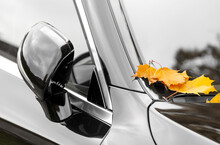 Yellow Maple Leaves On Black Car In Autumn