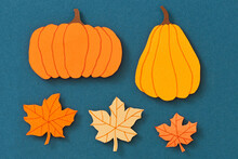 Autumn Background With Mini Pumpkins Overhead View
