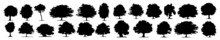 Trees Silhouettes. Forest And Park Pines Firs And Spruces, Coniferous And Deciduous Trees. Vintage Trees And Forest Silhouettes Set In Monochrome Style Isolated Vector Illustration