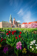 Zamkowy ogród w Krakowie