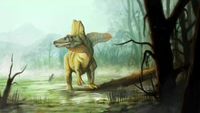 A Spinosaurus In The Swamp