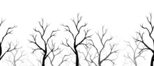 Vector Horizontal Seamless Border With Black Silhouettes Of Bare Trees On A White Background.