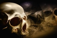 Human Skulls Against Dark Background