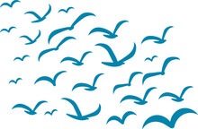 Silhouettes Of Groups Of  Birds On White. Vector