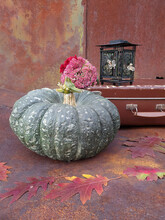 Green Pumpkin, Old Suitcase And Lantern On The Background Of An Old Rusty Metal Sheet With Fallen Oak Leaves