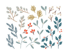Hand-drawn Set Of Winter Plants. Eucalyptus, Mistletoe, Pine, Holly, Berries. Concept Of The Winter Season, Holidays, Christmas, New Year. Colorful Vector Illustration.