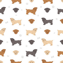 Glen Of Imaal Terrier Seamless Pattern. Different Poses, Coat Colors Set