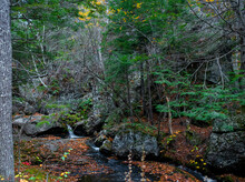 Fall In The New England Mountains