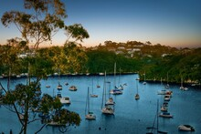 View Of Sydney Harbour At Dusk
