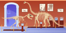 Empty Museum Of Paleontology With Dinosaurs Skeletons Vector Flat Cartoon Illustration