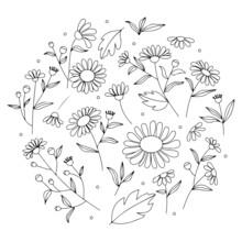 Set Of Floral Leaf Hand-draw Elements. Hand Drawn Design. Cute Vector Illustration Design.