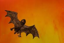 Halloween Bat With Orange Background