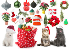 Christmas Collage With Cute Animals And Santa Bag On White Background