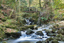 Small Waterfall Passing Under Wooden Bridge In The Grounds Of Rydal House Lake District Cumbria.