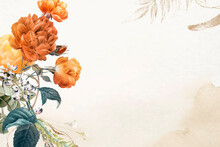 Flower Background Aesthetic Border Vector, Remixed From Vintage Public Domain Images