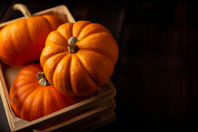 Little Pumpkins In A Rustic Box. Pumpkins Are Widely Grown For Commercial Use And As Food, Aesthetics, And Recreational Purposes. Much Consumed On Thanksgiving Day And Halloween Decoration