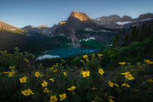 Yellow Wildflowers With Turquoise Grinnell Lake And Big Mountain, Glacier National Park, Montana