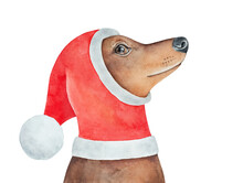 Cute Dog Character Wearing Bright Red Santa Hat Decorated With White Fur, Looking Up. Hand Painted Water Color Graphic Drawing, Cut Out Element For Design Decoration, Print, Greeting Card, Poster.