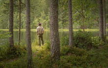 Man Looking Over A Small Lake In A Forest