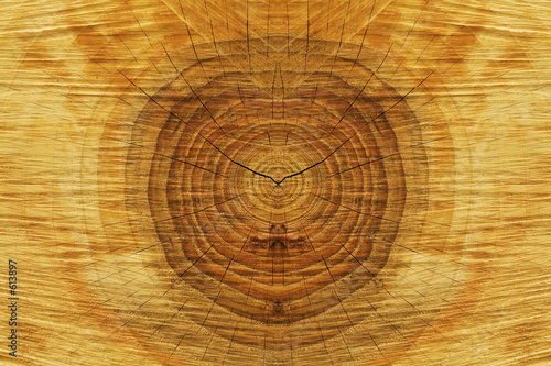wood-texture #613897