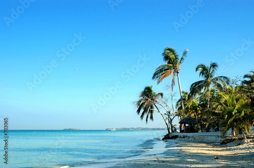 Photo negrils beach