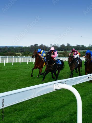 Stampa su Tela horses racing