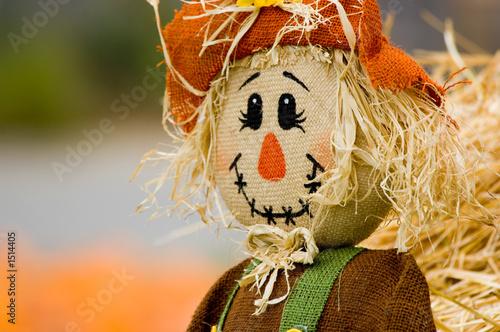 Fotografia autumn decoration
