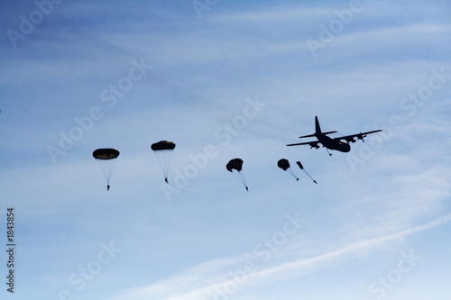 Canvas Print airborne dropping