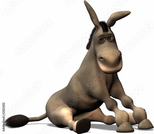 Fotografie, Tablou unlucky donkey