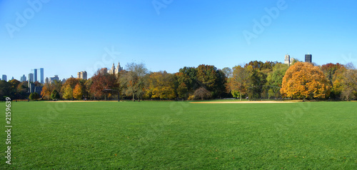 Fotomural great lawn panoramic view, central park, new york