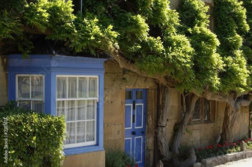 Fototapeta organic cottage