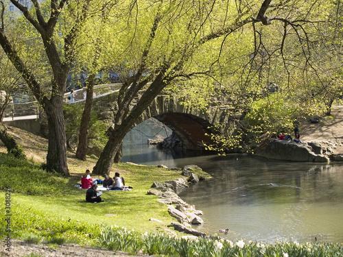 Foto spring afternoon