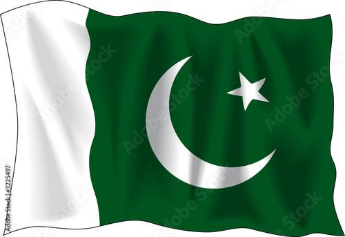 flag of pakistan #3225497