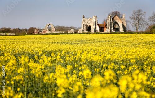 Photo leiston abbey suffolk
