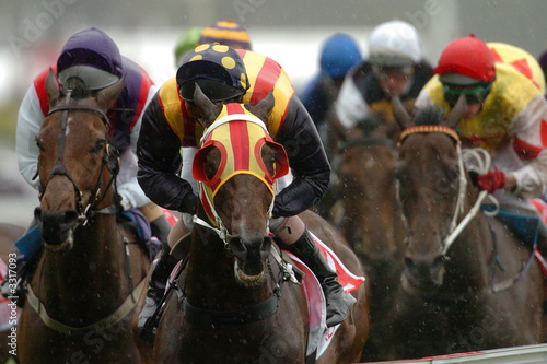 Canvas-taulu horse racing winning 02