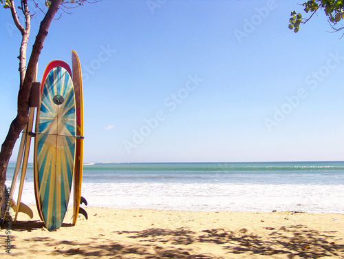 Canvas Print Surfing boards on the beach