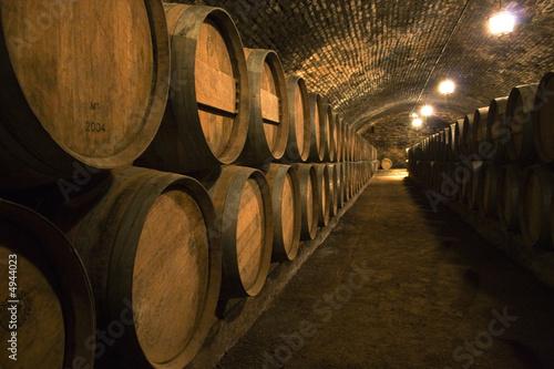 Canvas Print Wine Cellar