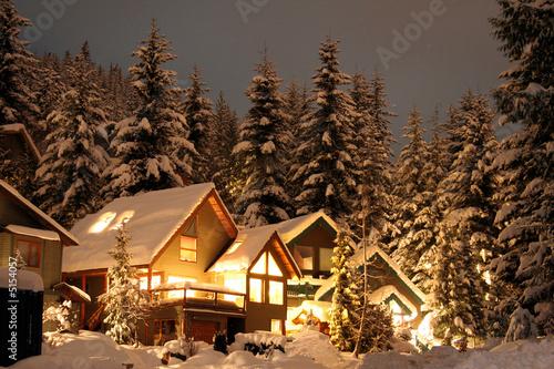 Slika na platnu Winter cabin