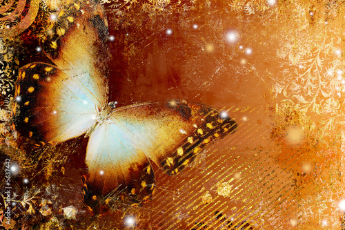 golden butterfly #5637442