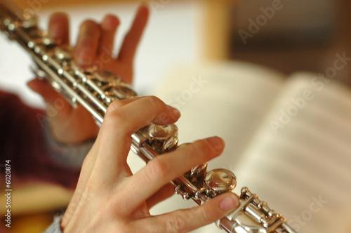 playing the flute Fototapeta
