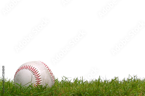 Canvas Print Baseball in the grass
