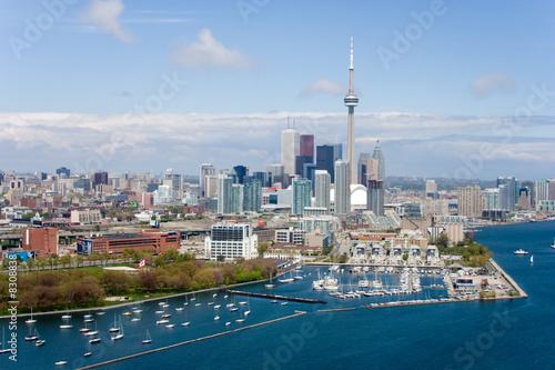 Toronto birds view CN tower