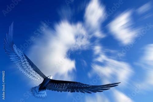 Fotografija Aquila nel cielo