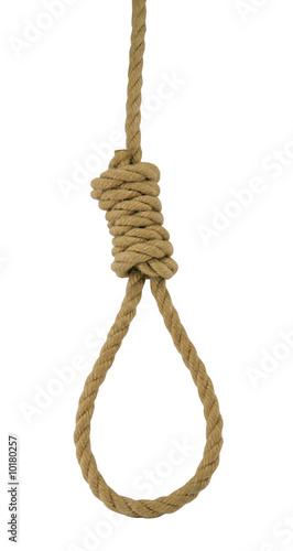 Fotografija Hanging noose of rope isolated on white.