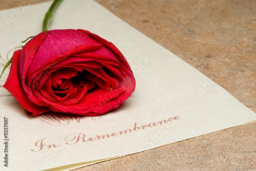 Fototapeta In Remembrance